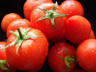 Что мы знаем о помидорах